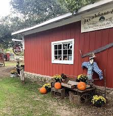 Pet Shed Promo Code March 2017 by Country Woods Inn Glen Rose Tx Booking Com