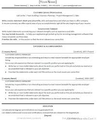 What Us A Resume Summary Executive Example