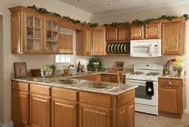 Useful Kitchen Ideas With Oak Cabinets Fantastic Home Decor Ideas