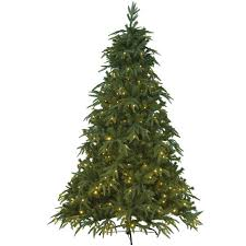 Artificial Fraser Fir Christmas Trees Uk by Kaemingk Everlands Victoria Pine Pre Lit Christmas Tree 6ft