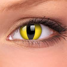 cat contacts cat eye contact lenses pair edit contact lenses