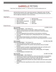Best Sales Associate Resume Example