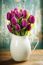 best 25 tulips in vase ideas on growing tulips how