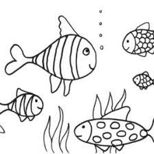 Fish Coloring Pages FREE Printable AngelDesign