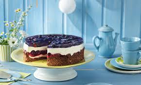 kleine heidelbeer joghurt torte