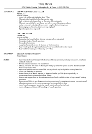 Lead Teller Resume Samples | Velvet Jobs Bank Teller Resume Sample Banking Template Bankers Cv Templates Application Letter For New College Essay Samples Written By Teens Teen Of Dupage With No Experience Lead Tellersume Skills Check Head Samples Velvet Jobs Cover Unique Objective Fresh Free America Example And Guide For 2019 Graduate Beautiful
