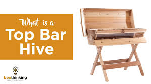 What Is A Top Bar Hive? - YouTube All Products Backyardhive Top Bar Hives Hive Plans About Bees Pinterest Bar Brisbane Backyard Bee Hive Journal Help And Advice For Bkeepers Bespoke Bee Supply Why Hive Design Matters Bespoke Supply A Detailed Look At The Beehive Perfectbee Take Back Farm Happy Hour Dimeions Pallet Pallets Building Our Ipdence Homestead Best 25 Ideas On Bkeeping Flow Cool Free Kenyan Top Fl