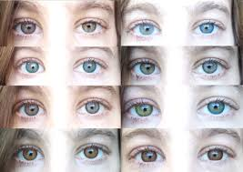 Prescription Colored Contacts Halloween Uk by Color Contacts All 12 Freshlooks Color Contact Lenses Youtube