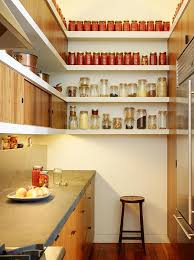 Kitchen Pantry Options And Ideas