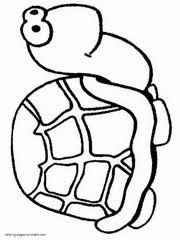 Preschool Coloring Books Turtle Animal