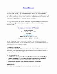 Resume For Jobs Example Elegant Procurement Career Objective Baskanai