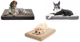 top 10 best cheap dog beds