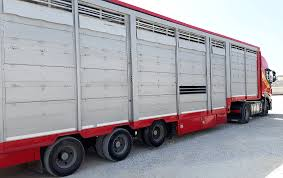 Trailers For Transportation Of Livestock Dog Trailers Allquip Water Trucks 729i Trailers For Trucksjeeps Trailer Skirt Wikipedia Forsale Central California Truck And Sales Sacramento Trailers For Sale 18555048redgade_emgency_trailer_2jpg 114 Rc Retro Rides Rc Semitruck Kits Best Resource Cargo Equipment Inlad Van Company Aussie Semi