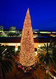Fashion Island Lighting Ceremony Newport Beach Tree 2012
