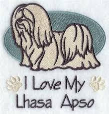 My Lhasa Apso Is Shedding Hair by 109 Best Lhasa Apso Images On Pinterest Lhasa Apso Dogs And