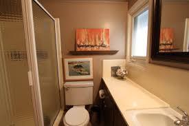 100 Mid Century Modern Bathrooms Midcentury Modern Bathroom Counters Midcentury Modern Remodel
