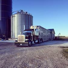 Home Bljack Livestock Cattle Maps Sahans Transport Skyfer Logistic Inc About Metzger Trucking Gallery West Land Steves Facebook Bond Pty Ltd Services Bathumi How The Eld Mandate Will Effect Animal Welfare Protect The Harvest Lawrencelivestocktransport Home