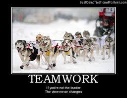 Teamwork Dogs Sports Leadership Best Demotivational Posters