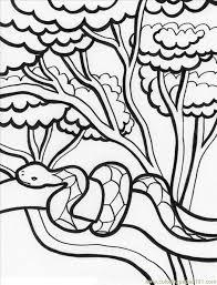 Windows Coloring Jungle Printable Pages About Scene Az