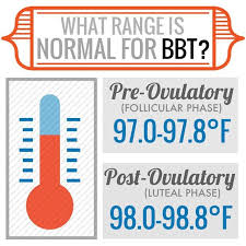 normal temperature range chart best 25 normal baby temperature ideas on normal
