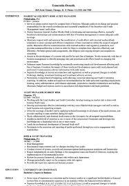 Create It Audit Manager Resume Sample Risk Samples