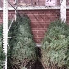 Christmas Tree Stands At Menards by Menards 18 Reviews Hardware Stores 7145 E 96th St