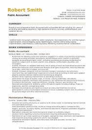 Public Accountant Resume Example