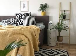 schlafzimmerpflanzen geeignete pflanzen tipps otto