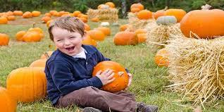Local Pumpkin Farms In Nj by Best Pumpkin Picking Farms In New Jersey
