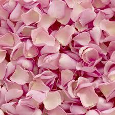 Romantic rose petal bath box