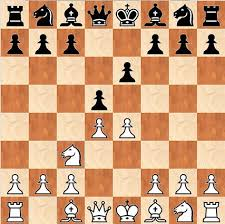 Thanks To The Analysis Of Computers And Many Strong Players There Exist A Vast Amount Opening Theory In Other Words After Millions Chess Games