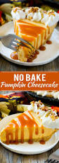 Keebler Double Layer Pumpkin Cheesecake Recipe best 25 no bake cheesecake ideas on pinterest no bake vanilla