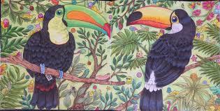 Livre De Coloriage Pour Adulte Amazon Beau Des Coloriages Amazon