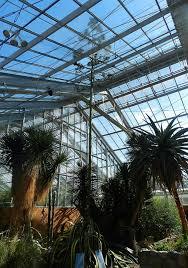 Website Extra Plants nature learning at Matthaei Botanical