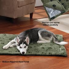 dog beds cozy cushion dog bed by drs foster smith