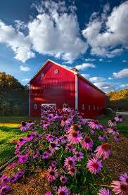1414 Best ℜε∂ BÅRηS & MOℜε♘ .· ·. ♘ Images On Pinterest | Red ... Red Barn Properties City Of Arcadia Travelokcom Oklahomas Official Travel May 2016 Red Barn Life To The Heymoon Cabin Rental With Hot Tub Near Oklahoma For Sale Ready To Deliver Tiny House Listings Round In Youtube Barns For Sale Deltabluez Stockdogs Historic Ok On Route 66 Jim Gatlings