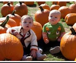 Best Pumpkin Picking Bergen County Nj by 12 Best Top 12 Pick Your Own Pumpkin Patches Near Nyc Images On