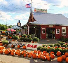 Pumpkin Farms In Bay County Michigan by Tantillo U0027s Farm Home