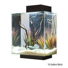 Spongebob Aquarium Decor Set by The 25 Best Aquarium Accessories Ideas On Pinterest Plant Fish
