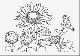 Wonderful Printable Nature Coloring Pages For Kids With And Pdf