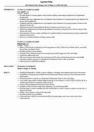 Cover Letter Examples For Sales Team Leader