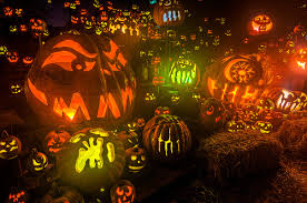 Roger Williams Pumpkin by Jack O U0027 Lanterns Abound A Gallery On Flickr