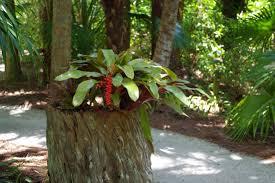 Mckee Botanical Garden Album on Imgur