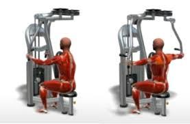Pec Deck Exercise Alternative by Machine Rear Deltoid Fly U2022 Bodybuilding Wizard
