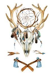 Animal Skull With Dreamcatcher Stock Illustration