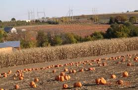 Omaha Pumpkin Patch by Panoramio Photo Of West Omaha Suburbs Gretna Ne In Sarpy