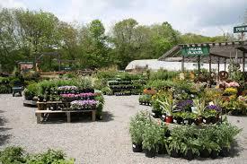 Gilbertie s Herbs and Garden Center Sustainne