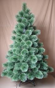 Best Real Christmas Tree Type