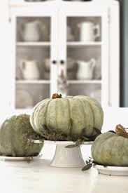 Corona Del Mar Pumpkin Patch by 123 Best Pumpkin Cottage Images On Pinterest Green Pumpkin