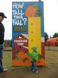 Petaluma Pumpkin Patch Corn Maze Map by How Tall This Fall Sign Mullen U0027s Fall Festival And Pumpkin